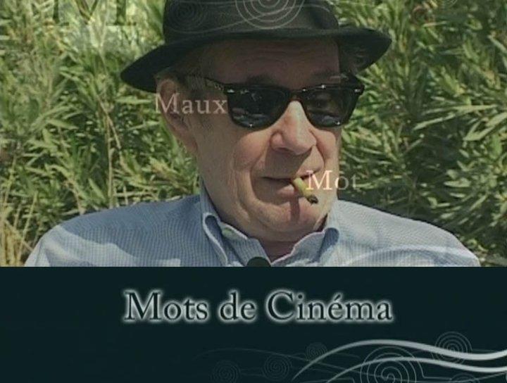 Mots de Cinéma, André S. Labarthe