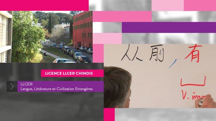 UFR2 Licence LLCER - Chinois